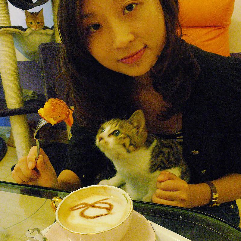 catcoffee013